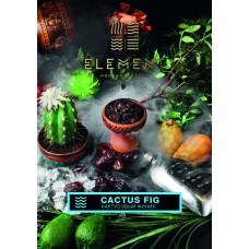Табак Element Вода Cactus Fig (Кактусовый Финик) - 100 грамм