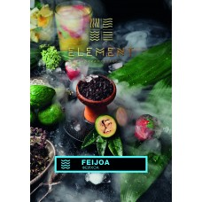 Табак Element Вода Feijoa (Фейхоа) - 100 грамм