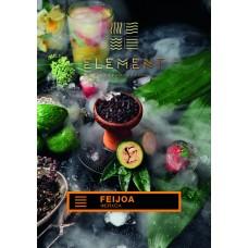 Табак Element Земля Feijoa (Фейхоа) - 100 грамм